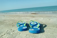 Blue flip flops on a beach.jpg