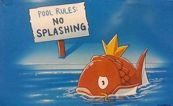 No splashing.jpg