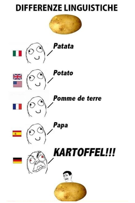 Language differences potato.png