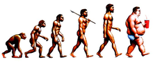 Evolution1.PNG