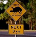 Bs-funny-sign-deer-crossing.jpg