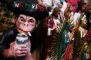 Mexican curious monkey.jpg