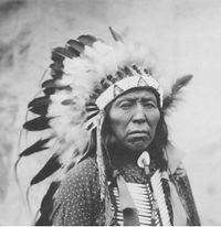 Chief Flying Hawk.jpg